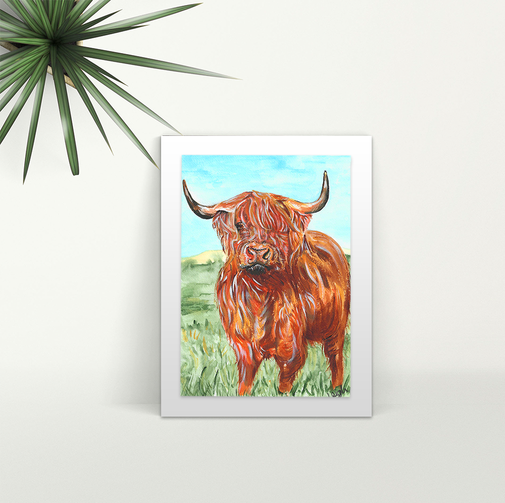 Highland Cow - A4 Print - Mounted
