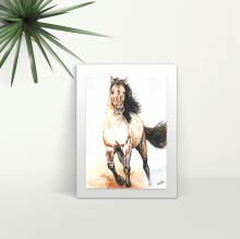 Galloping Horse - A4 Print - Mounted
