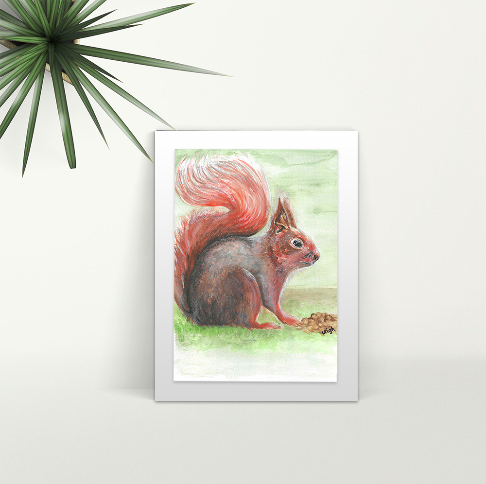 Squirrel - A4 Print - Mounted