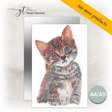 Kitten - Large Range of Giftware available.