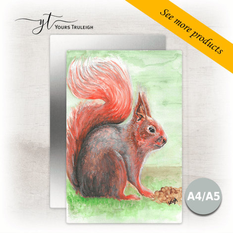 Squirrel - Large Range of Giftware available.