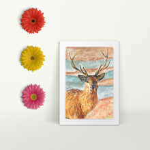 Stag - A4 Print - Mounted