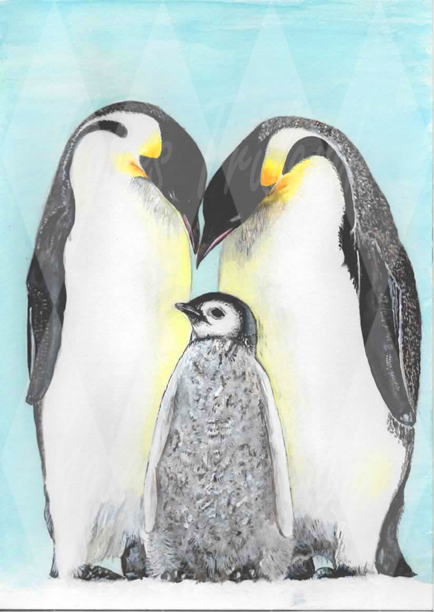 Emperor Penguin adults with baby - Personal Use License