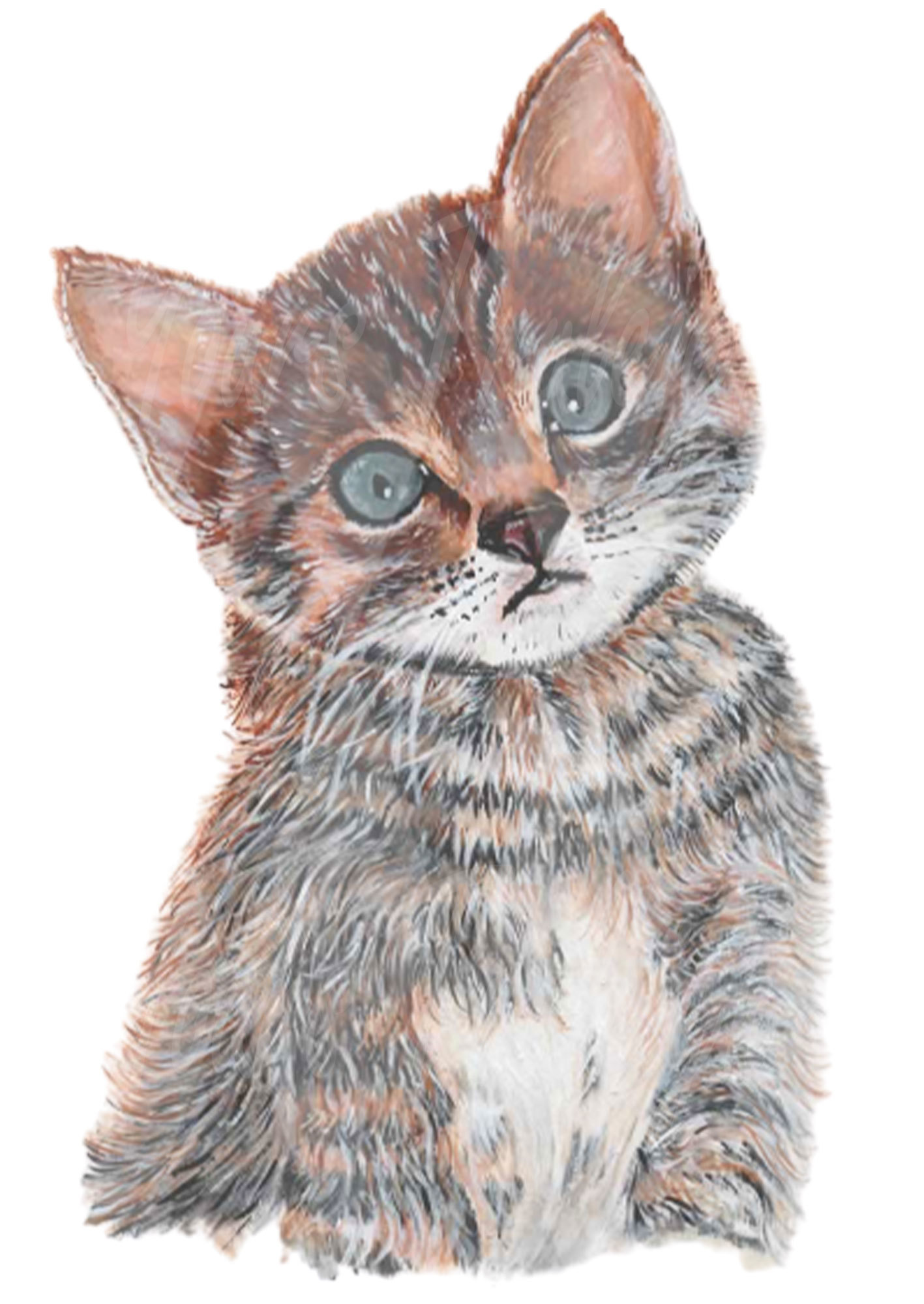Cute Kitten - Personal Use License